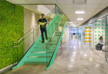 Ogrody wertykalne - sposób na roślinność w biurze