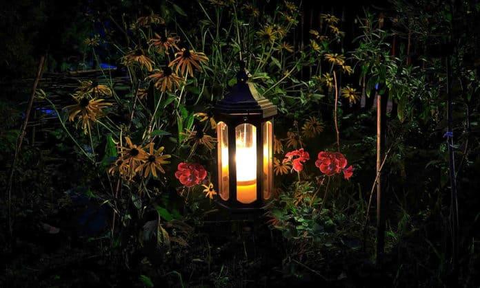 Jak efektownie oświetlić ogród.