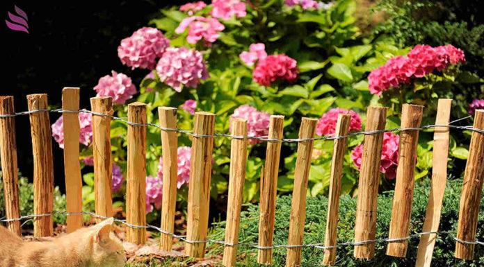Ogród - wydziel strefy naturalnymi płotkami